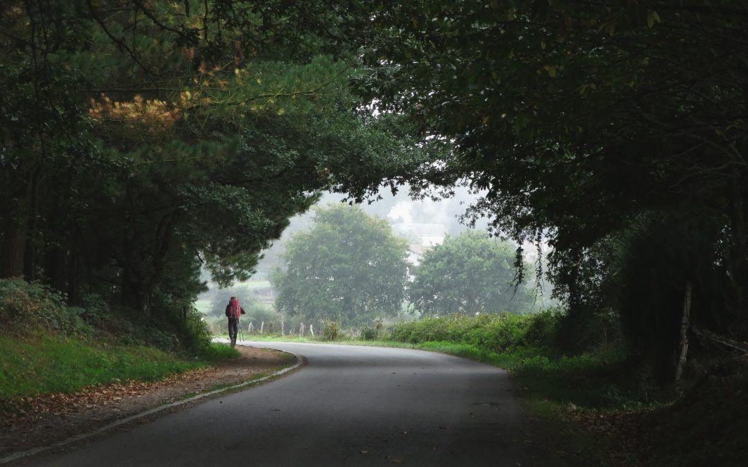 Der Jakobsweg in Wolnzach