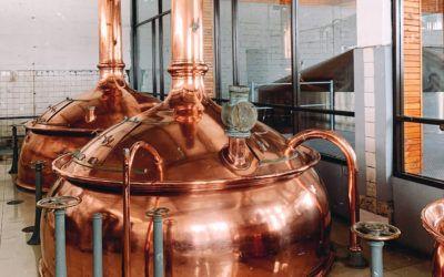 Acht deutsche Brauereien an der Weltspitze